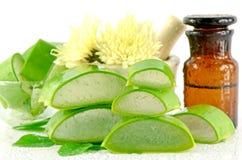 Free Fresh Aloe Vera. Royalty Free Stock Photos - 50840368