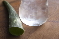 Aloe vera juice with fresh leaves Royalty Free Stock Photo