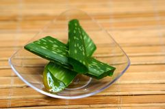 Fresh aloe vera leaves Stock Photo