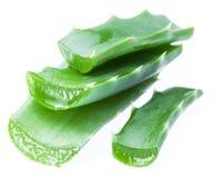 Fresh aloe vera leaves isolated. Stock Images