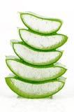 Fresh Aloe Vera on White Background. Royalty Free Stock Images