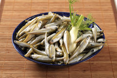 Fresh anchovies Stock Images