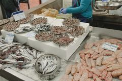 Fresh anchovies and other fishes at the fish market while fishmonger clean the fishes. Variety of fresh fishes on ice at the fish market in Portugal Stock Photo