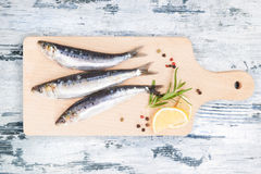 Fresh anchovy fish on wooden kitchen board. Stock Photos
