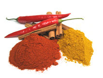 Fresh And Dried Spices Royalty Free Stock Photography