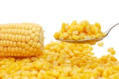 Fresh And Tinned Corn On A Spoon Royalty Free Stock Photos