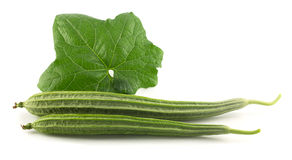 Fresh angled gourd - vegetable with leaf on white Royalty Free Stock Photo