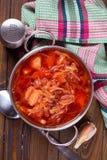 Fresh appetizing vegetable soup Stock Image