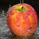 Fresh apple. An apple is washed clean with water Royalty Free Stock Photo