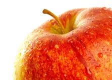 Fresh apple Royalty Free Stock Photo