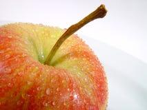 Fresh apple. A fresh apple ready to eat Royalty Free Stock Photos
