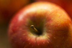 Fresh apple closeup Stock Photos