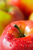 Fresh apple with drop dew Royalty Free Stock Photo