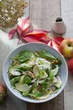 Apple and fennel salad with walnuts and greens. Fresh apple and fennel salad with walnuts, onion and greens stock photography