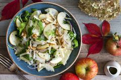 Apple and fennel salad with walnuts and greens. Fresh apple and fennel salad with walnuts, onion and greens royalty free stock images