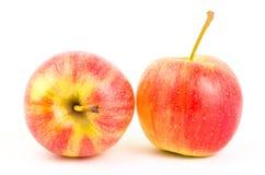 Fresh apple fruit Stock Photography