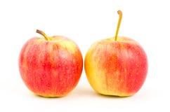Fresh apple fruit Stock Photos