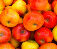 Apple fresh fruits background. Fresh apples fruits background photograph captured from a small fruits shop around the road side area royalty free stock photo