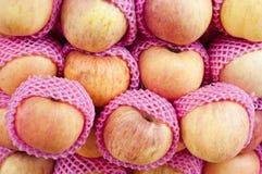 Fresh apple. Stock Photography