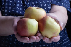 Fresh apple in the hands of an elderly woman Royalty Free Stock Image