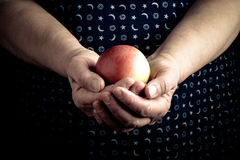 Fresh apple in the hands of an elderly woman. Toned Royalty Free Stock Images