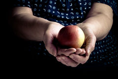 Fresh apple in the hands of an elderly woman. Toned Stock Images