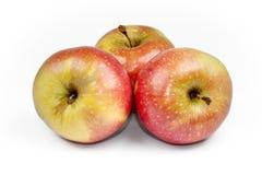 Fresh apple isolated on white background. Royalty Free Stock Image