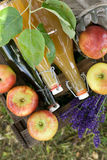 Fresh apple juice Stock Photography