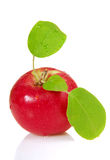Fresh apple with leaves Royalty Free Stock Images