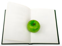 Fresh apple on notebook Stock Photography