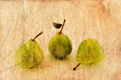 Fresh apple and pears in grunge and retro style. Stock Image