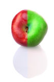Fresh apple with red and green half. Fresh apple with stem and reflection, with red and green half Royalty Free Stock Photography