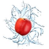 Fresh apple with water splash. On the white background Stock Images