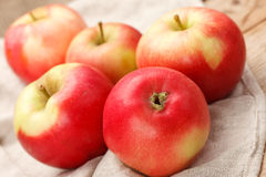 Fresh apples Stock Photography