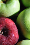 Fresh Apples 5 Stock Images