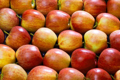 Fresh apples as a background Stock Images