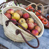 Fresh apples in the basket Stock Image