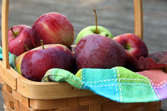 Fresh Apples in Basket Royalty Free Stock Photo