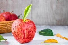 Fresh apples in basket stock images