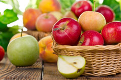 Fresh apples in the basket Royalty Free Stock Photography