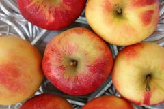 Fresh apples. In a bowl Royalty Free Stock Photo