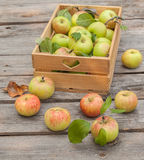 Fresh apples in box on wooden table Stock Image