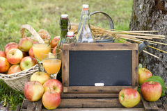 Fresh apples and chalkboard Royalty Free Stock Image