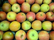 Fresh apples close-up Stock Photography