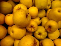 Fresh apples close-up Royalty Free Stock Photography