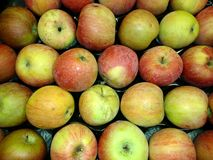 Fresh apples close-up Royalty Free Stock Photos