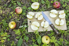 Fresh apples cut on a board with a knife on a green grass Stock Photography