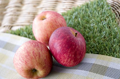Fresh apples on green grass Stock Photography