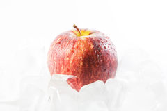 Fresh apples on ice Stock Photography