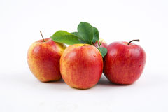 Fresh apples with leaves Royalty Free Stock Image